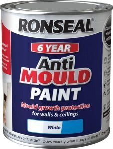 ronseal-anti-mould-paint
