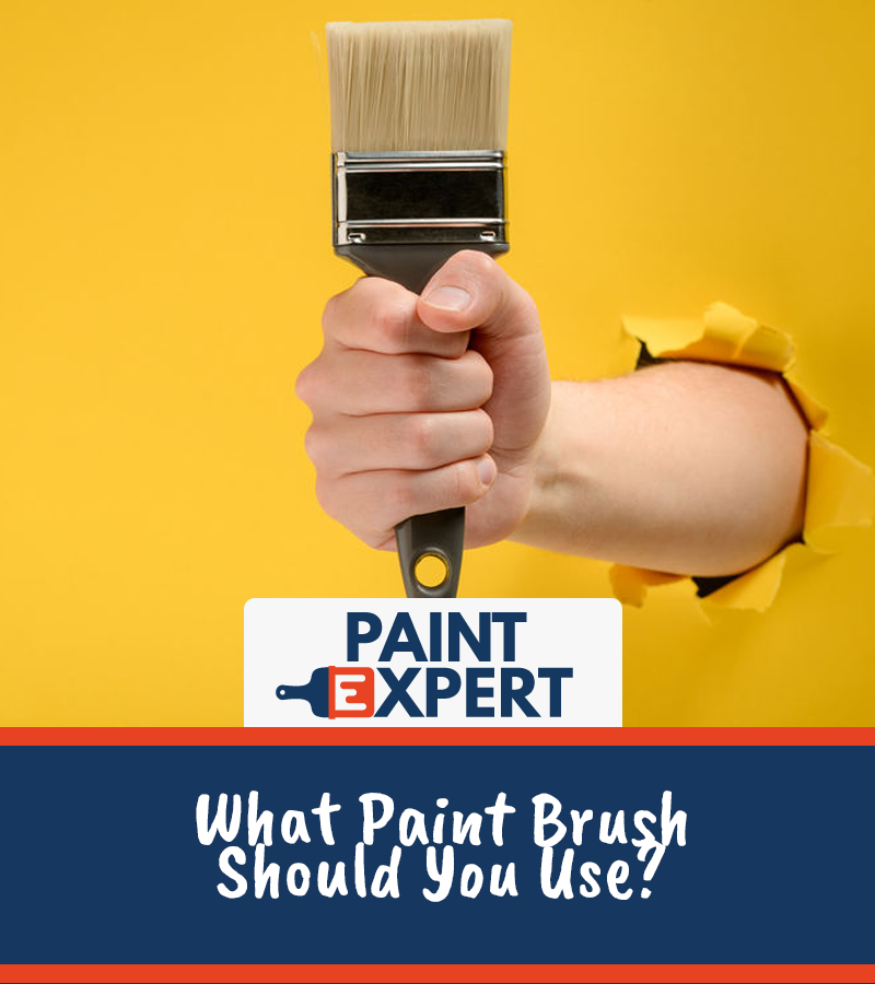 Best Paint Brush Guide 2